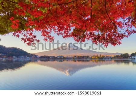 Mountain Fuji with red maple leaves or fall foliage in colorful autumn season near Fujikawaguchiko, Yamanashi. Five lakes. Trees in Japan with blue sky. Nature landscape background #1598019061