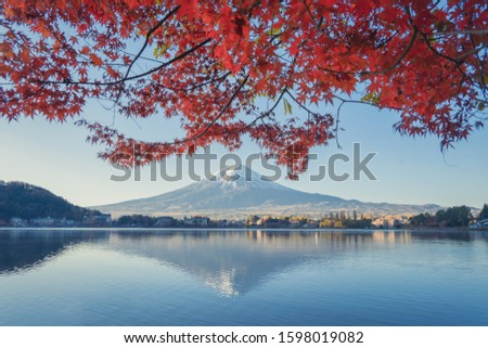 Mountain Fuji with red maple leaves or fall foliage in colorful autumn season near Fujikawaguchiko, Yamanashi. Five lakes. Trees in Japan with blue sky. Nature landscape background #1598019082