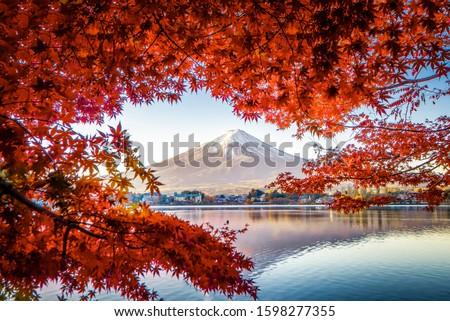 Fuji Mountain Reflection in Autumn Red Maple Leaves Frame, Kawaguchiko Lake, Japan #1598277355