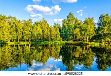 Summer forest river reflection landscape. Forest river reflection view. Forest river landscape. Green forest river view #1598528335