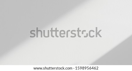 Background shadow and Nature shadows.Gray shadows trees leaf on white wall. Abstract shadows nature concept blurred background.White and Black.Texture shadows  #1598956462
