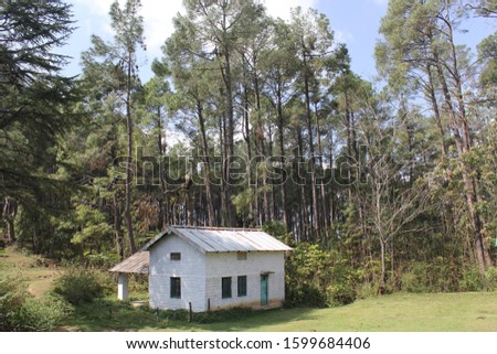 """""""Beautiful Cottage in Nature """"Camera Canon 60D72 dpiResolution - 5184×3456Manual modeIso 1001/60 sec. and f/8 Date of shoot - October 15th , 2015Located at almora ,Uttarakhand, INDIA"""