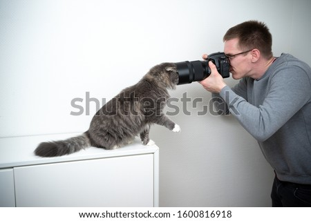 funny moment of a photographer trying to take picture of a curious cat with dslr camera and tele lens