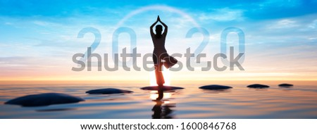 Young healthy woman practicing yoga at  sunset time - year 2020 - 3D illustration