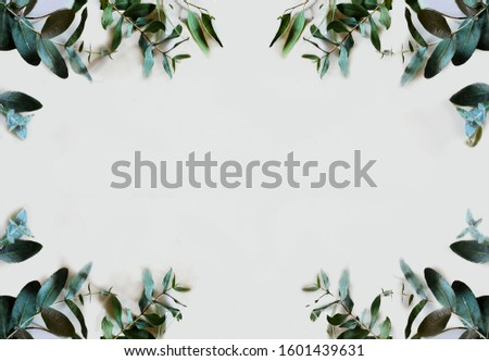 symmetrical frame of eucalyptus branches and leaves #1601439631
