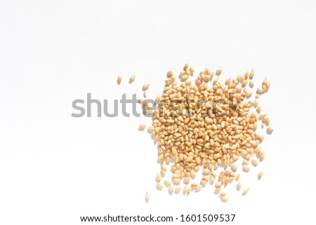 toasted sesame seeds.made in japan #1601509537
