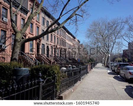Brownstone houses on a street in the up and coming neighborhood of Carroll Gardens, Brooklyn, NYC