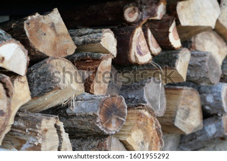 Close up shot of oak's firewood, Japan. #1601955292