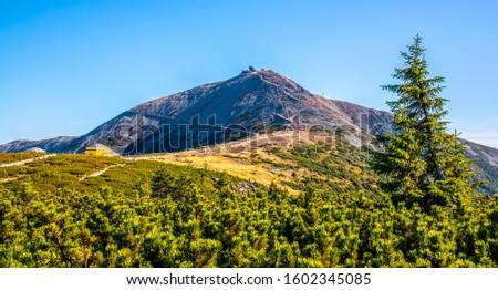 Snezka, or Sniezka - the highest mountain of Czech Republic, Giant Mountains - Krkonose National Park, Czech Republic and Poland. #1602345085