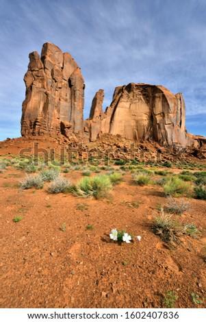 Monument Valley, USA - Rain God Mesa Rock Formation #1602407836