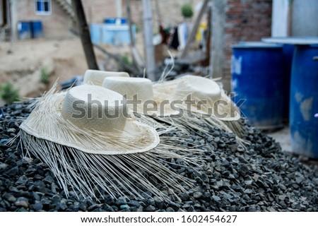 Montecristi, Manabí - Ecuador, toquilla straw hats (Panama hats). #1602454627