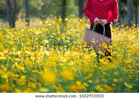 The girl carried the basket through the yellow flower fields during the sunset and shone from behind. Reduce global warming by refraining from using plastic bags. #1602955810
