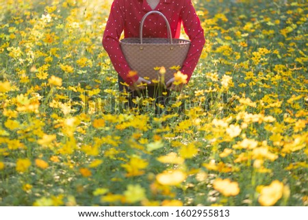 The girl carried the basket through the yellow flower fields during the sunset and shone from behind. Reduce global warming by refraining from using plastic bags. #1602955813