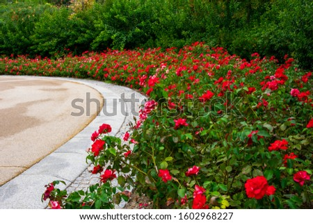 madrid rio park (urban park) #1602968227