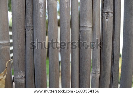 Israel. Bamboo fence with slots for light. #1603354156