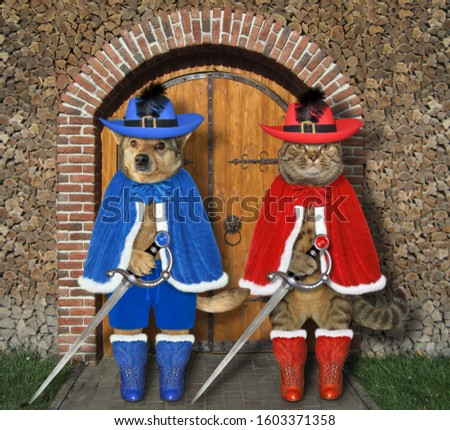 The cat with the dog dressed in musketeer uniform with swords are standing at the gate of the old castle. #1603371358