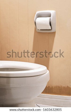 toilet paper roll and toilet bowl #1603632805
