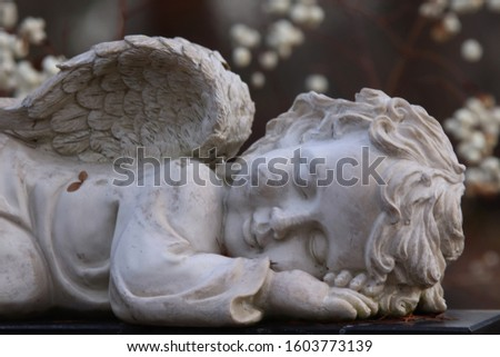 A decorative white angel figure on a graveyard. Behind the angel, there are white flowers. Concepts of sleep, faith, death, innocence and after life. #1603773139