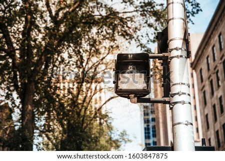 Traffic lights on a pole in Canada. Traffic signals for pedestrians crossing. Zebra crossing #1603847875