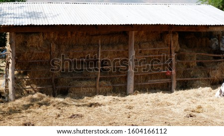 Dry baled hay bales stack, rural countryside straw.  #1604166112