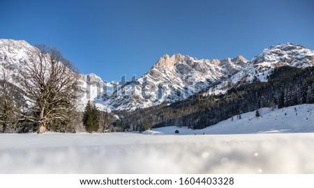 Beautiful idyllic winter landscape: stunning mountain range, snowy trees and blue sky #1604403328