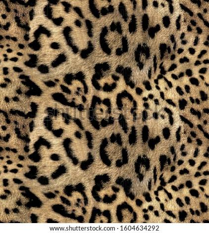 Leopard skin pattern jaguar design seamless for print  #1604634292