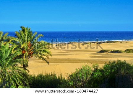 a view of the Natural Reserve of Dunes of Maspalomas, in Gran Canaria, Canary Islands, Spain Royalty-Free Stock Photo #160474427