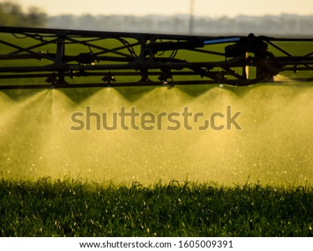 Jets of liquid fertilizer from the tractor sprayer. Tractor with the help of a sprayer sprays liquid fertilizers on young wheat in the field. The use of finely dispersed spray chemicals. #1605009391