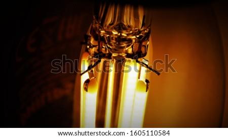 Vintage glass retro led light bulb for lighting and interior. #1605110584