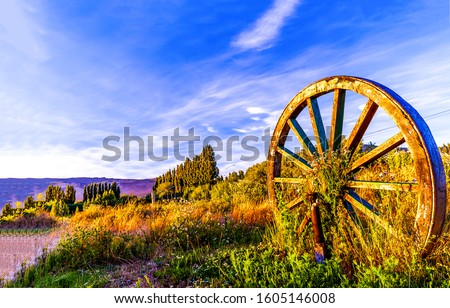 Wagon wheel in sunset field. Big wagon wheel. Sunset wagon wheel view #1605146008