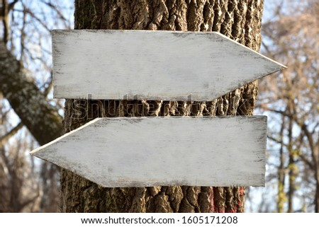 Two blank white weathered wooden signposts nailed to a tree in the forest with arrows showing the left and the right directions. Copy space for custom text.