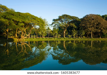 Trees reflecting in Kandawgyi Lake in Bogyoke Park (Bogyoke Aung San Park) in Yangon, Myanmar #1605383677