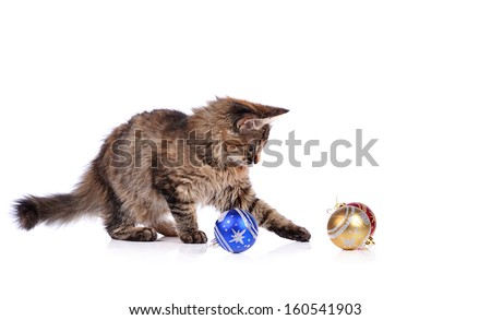 Funny cat with Christmas toys isolated on white  #160541903