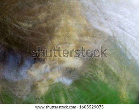 Abstract color lines in brown-green-white tones from nature. The picture was rotated. The blossom of a willow tree can be seen in the middle.