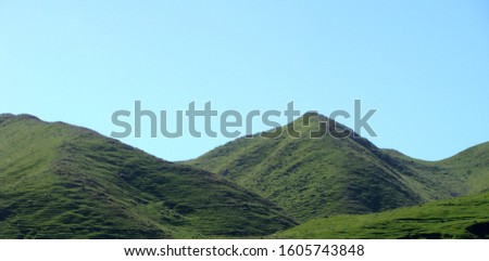 green hills of New zealand -north island - NZ-- This photo shows grass covered hills with sheeps and was taken during a road tour through the north island of New Zealand. #1605743848