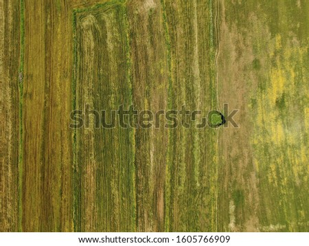 Aerial View Of The Farms  #1605766909