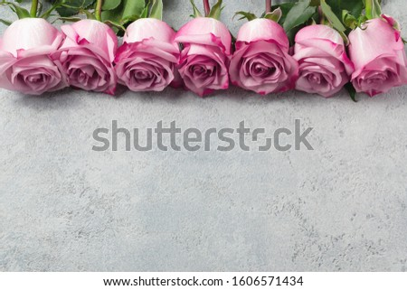 Flower arrangement - a row of pink roses on a concrete surface, template for design or greeting card, place for text, copy space