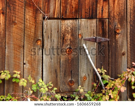 Small weathered wooden door with rusty hinges above overgrowth     #1606659268
