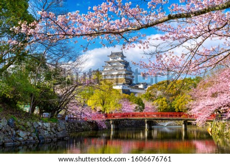 Cherry blossoms and castle in Himeji, Japan. #1606676761