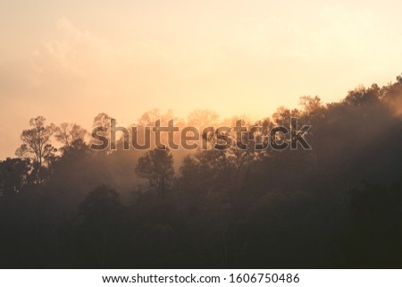 Morning light, sunrise on the mountain - morning nature Morning light, sunrise on the mountain - morning nature #1606750486