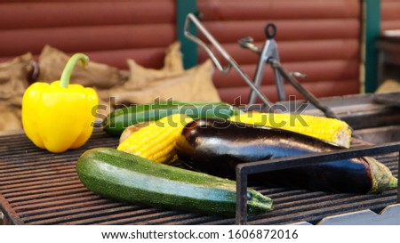 Grilling vegetables during an outdoor barbecue or on a picnic. Man preparing a vegetable barbecue, during summer time, direct sun light background. Summer feeling. Smoked vegan appetizer appetizer. #1606872016