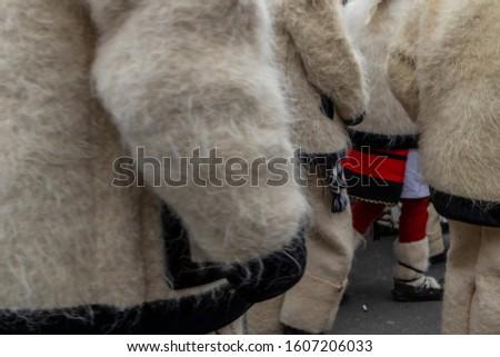 Sighetu Marmatiei, Romania: Maramures traditional costumes. Traditional Romanian peasant sandals which is worn with the Romanian peasant costume at Winter Customs and Traditions Marmatia Festival #1607206033
