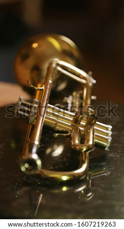 close-up gold color trumpet. Shallow depth of field. Bokeh in the background. brass instrument. breathing instrument #1607219263