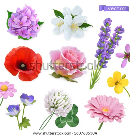 Spring flowers. Lilac, jasmine, poppy, rose, lavender, clover, chamomile. Vectorized image. Miscellaneous 3d realistic vector objects. Nature icon set Royalty-Free Stock Photo #1607685304