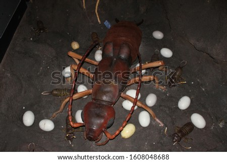 Artificial insects in artificial soil and artificial eggs  #1608048688