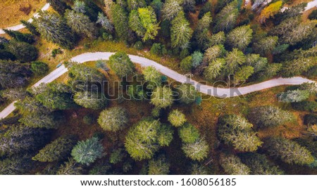 Scenic aerial view of a winding trekking path in a forest. Trekking path in the forest from above, drone view. Aerial top view of a trail in the middle of a forest. Aerial view of footpath in forest. Royalty-Free Stock Photo #1608056185