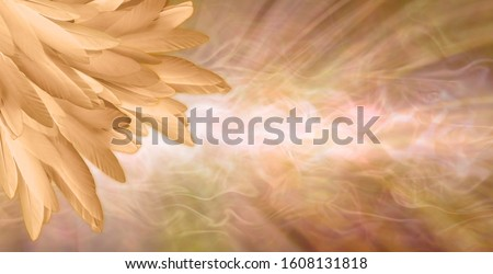 Golden Angel Feather Message Banner Background - a pile of random long golden feathers in left corner against a gaseous flowing energy field shaped like a giant feather with copy space  #1608131818