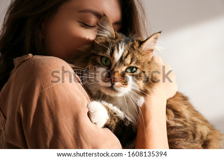Portrait of young woman holding cute siberian cat with green eyes. Female hugging her cute long hair kitty. Background, copy space, close up. Adorable domestic pet concept. #1608135394