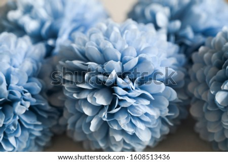 Background full of light blue petals. Flowers, textures. #1608513436