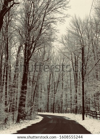 Snowfall covered road and wooden fence #1608555244